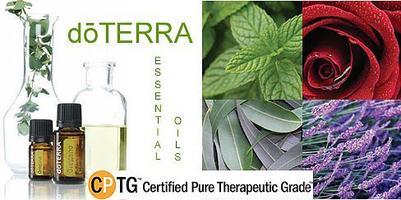 Calandra Chiropractic Essential Oils Class