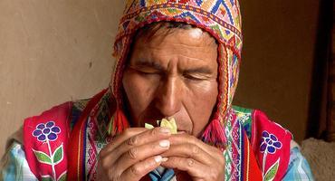 Wisdomkeepers, Paqo Andino