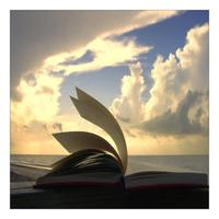 Life Book --- A Scrapbook for the Soul