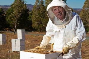 Beekeeping for Beginners - Two Day course on 5th &...