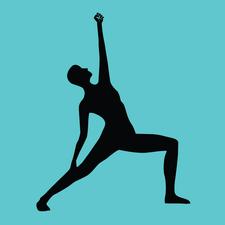 Naked in Motion WA logo
