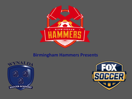Birmingham Hammers Presents: Wynalda Soccer Academy