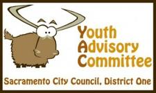 District One Youth Action Corps logo
