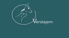 Verstajem.nl logo