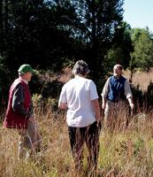 Hudson River Ramble - Forest Ecology Walk