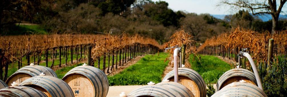 Wine Tasting Event - Victor Hugo Winery