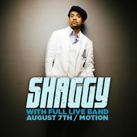Motion Presents Shaggy