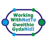 The BIG N Wales Co-Production Meet-up! - 'Working With...