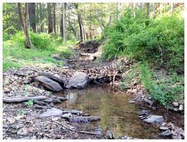 Farming For Clean Water: Common Sense Stewardship on...