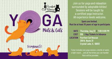 63d2dcafb4fc8b Mats & Cats Yoga Tickets, Thu, Aug 22, 2019 at 7:00 PM | Eventbrite