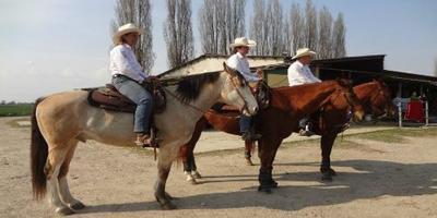 Corso per operatore di base di Equitazione Americana