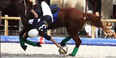 Corso per operatore tecnico di base di Horse Ball