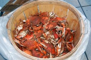 Geechie Gurl's 2nd Annual Homecoming Crab Crack for...