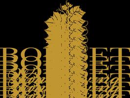 Taste of Boisset (Buena Vista Winery)