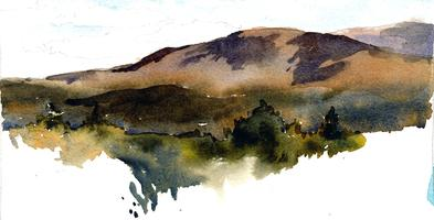 The Hidden Valley of Point Reyes: Thumbnail Sketching