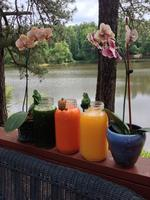 Two Week Springl Detox & Juice Fasting Renewal Retreat