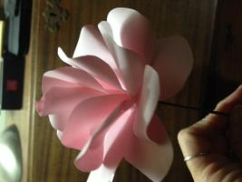 DIY Paper Rose Workshop