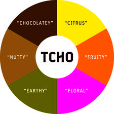 TCHO Chocolate logo