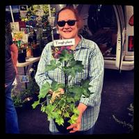 CA Native Plant Horticulture with Lili Singer