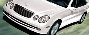 Susan Litchford Arbonne ATL Mercedes-Benz Celebration...