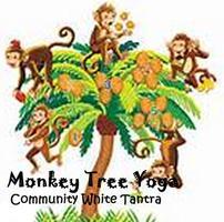 Thursday Monkey Tree Yoga