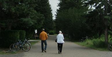 Walking Clinic - Aug. 19