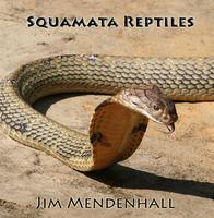 New! *Snakes Seminar*