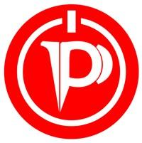 Professional IT Occupational Network (PITON) logo