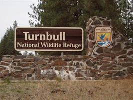 Night Hike at Turnbull Wildlife Refuge 8/1/14 at 7:30...