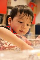 Little Makers: Super Soap Making