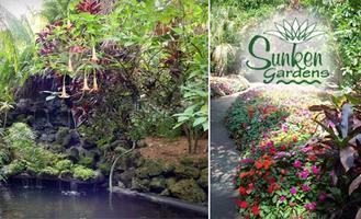 Guest Registration - Fall Bridal Show @ Sunken Gardens
