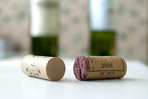 Old World & New World Wine: Styles, Traditions & Tastes