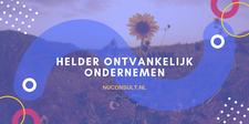 NuConsult.nl - Helder Ontvankelijk Ondernemen logo