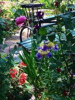Secret Gardens of The West Village with New 2 NY Tours