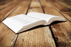 Reading Scripture: Understanding the Bible