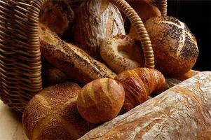 Bread Camp: A Farm to Table Experience with Chef Greg...