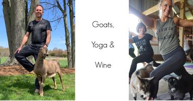 Goats, Yoga & Wine