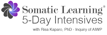 Dr. Risa Kaparo, Ph.D. - Inquiry of AIWP