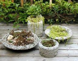 Hypertufa What? Make a Fun Garden Project! 11:00 a.m....