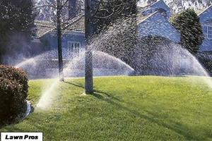 Landscape Tips and Smart Irrigation