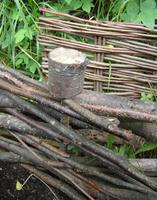 "Workshop: ""Building a Wattle Fence"""
