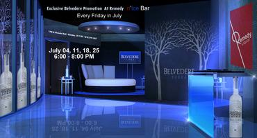 Belvedere Vodka Promotion at Remedy Ice Bar