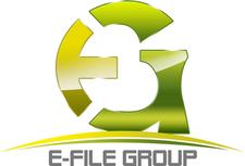 ELECTRONIC FILE GROUP, INC logo