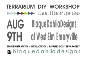 Blaque Dahlia Designs | Terrarium DIY Workshop | West...