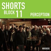Shorts Block 11: Perception