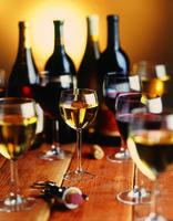 SMPS Tampa Bay Wine Tasting Social