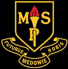 Medowie Public School logo