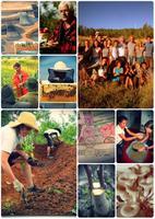 PDC+ 2015 - Cours pratique de design en permaculture