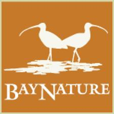 Bay Nature Institute logo