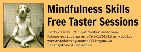 MINDFULNESS SKILLS TASTER SESSION MONDAY 18 AUGUST...